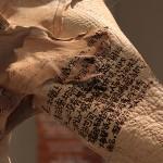 2_Minha-LEE_Immolation_installation_iron on dear skin_mixed media on hog leather_2017