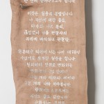 5_Minha-LEE_Immolation_installation_iron on dear skin_mixed media on hog leather_2017